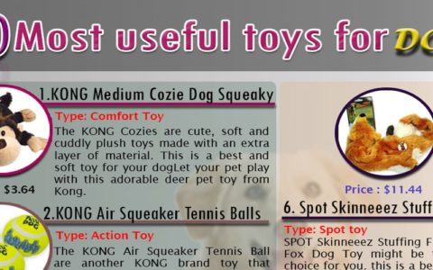 10 most useful toys for dog