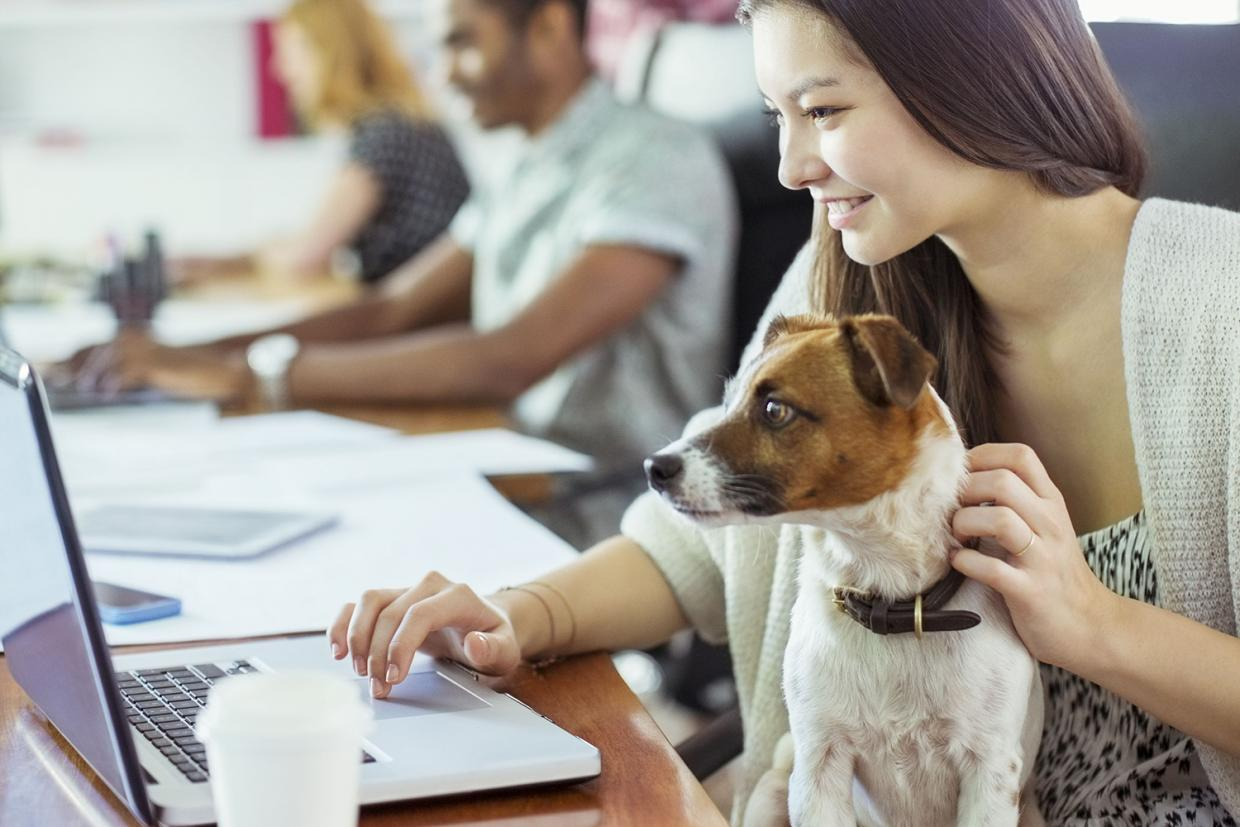 dogs- can be good for your health at work