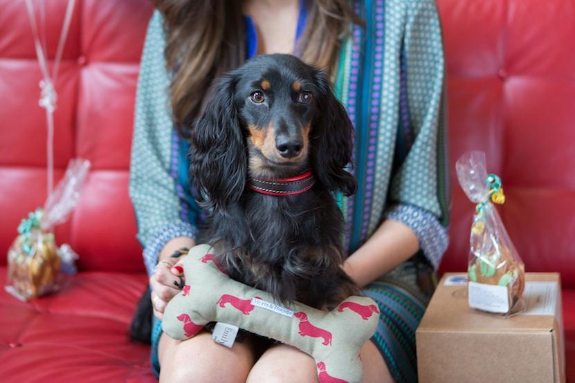 dogs encourage regular breaks