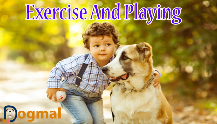 exercise-and-playing