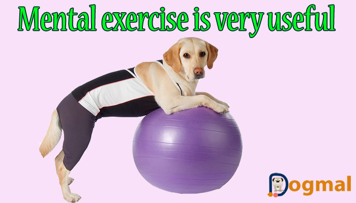 mental exercise is very useful