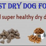 Best dry dog food – Find super healthy dry foods for your dog.