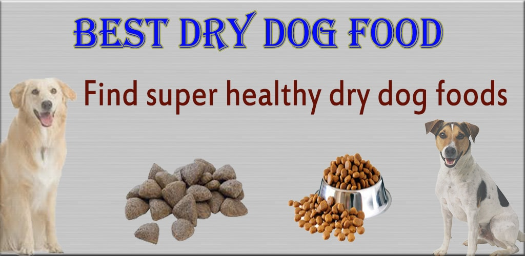 Best Dry Food For Young Dogs