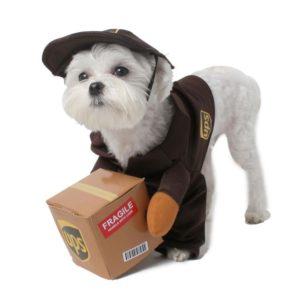 Pet UPS Pal Costume