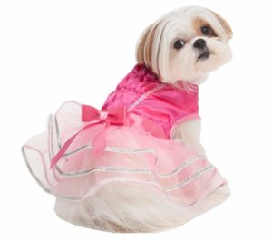 Ballerina Pet Costume  sc 1 st  Dogmal & Best Dog Costumes - Top 10 newest and most amazing dog costumes 2017
