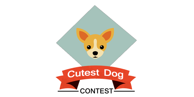 Cutest dog contest
