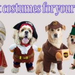 Best dog costumes – Top 10 costumes for your dogs