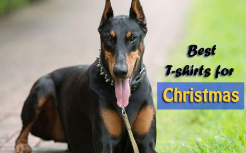 Doberman Pinscher T-shirts for Christmas