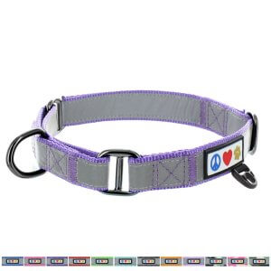 Pawtitas-Reflective-Dog-Collar-Martingale-Dog-Collar