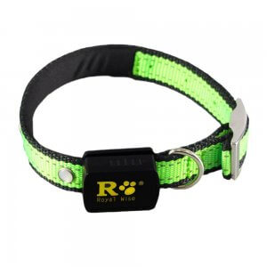 Royal-Wise-Led-Illumination-Nylon-Dog-Collar
