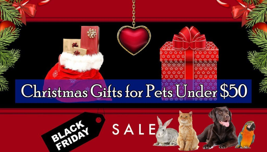 Top 10 Perfect Christmas Gifts For Pets Under 50