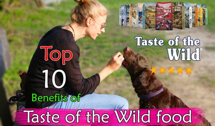 Benefits of Taste of the Wild food
