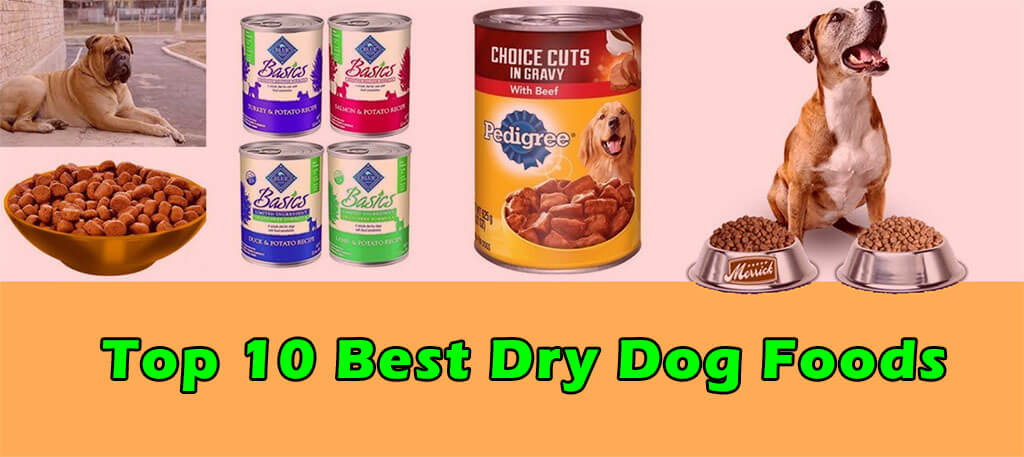 Dry Dog Foods