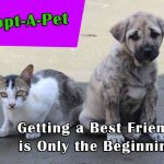Adopt-A-Pet: Getting a Best Friend is Only the Beginning