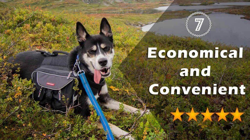 Economical and Convenient
